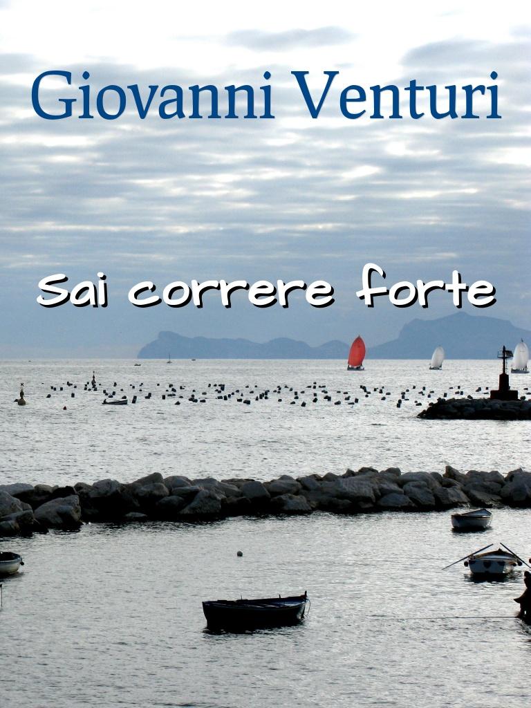 Immagine e artwork: (C) Giovanni Venturi